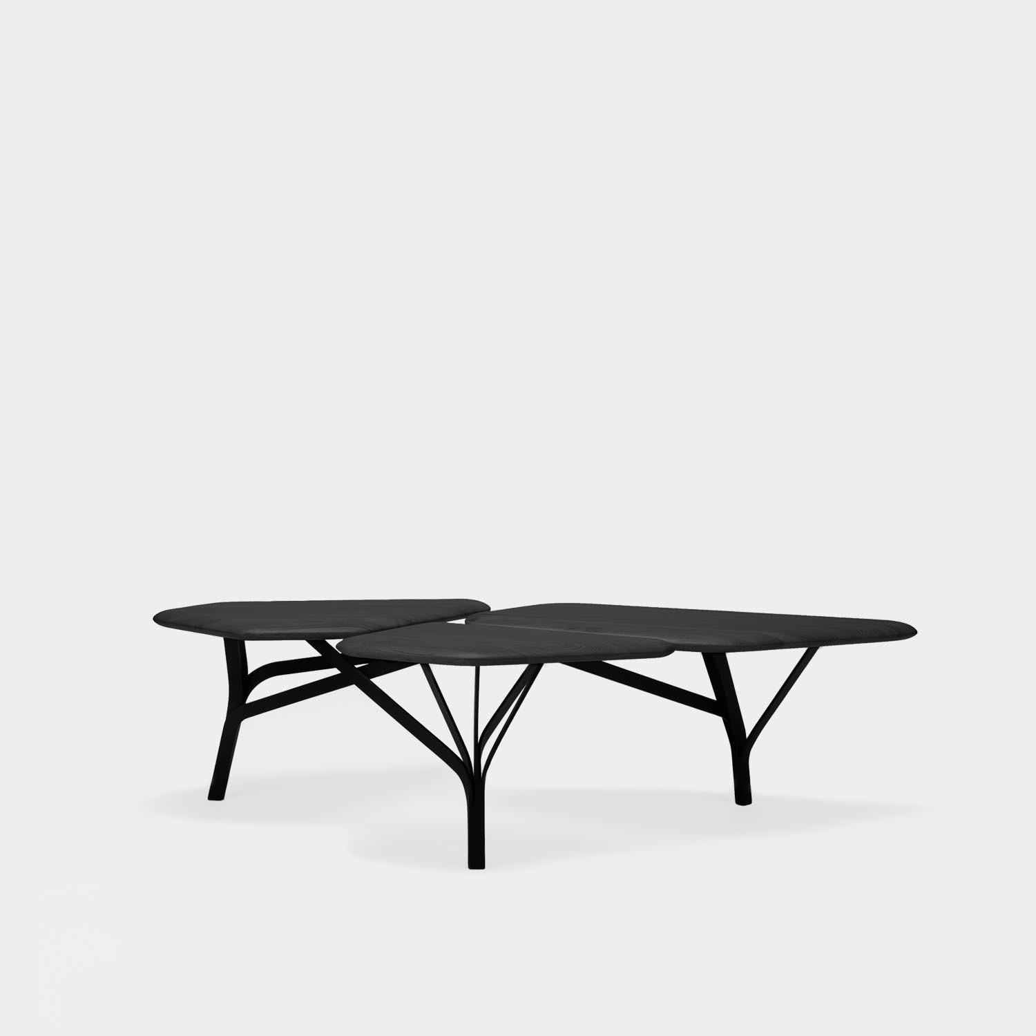 Borghese Coffee Table, Black Oak