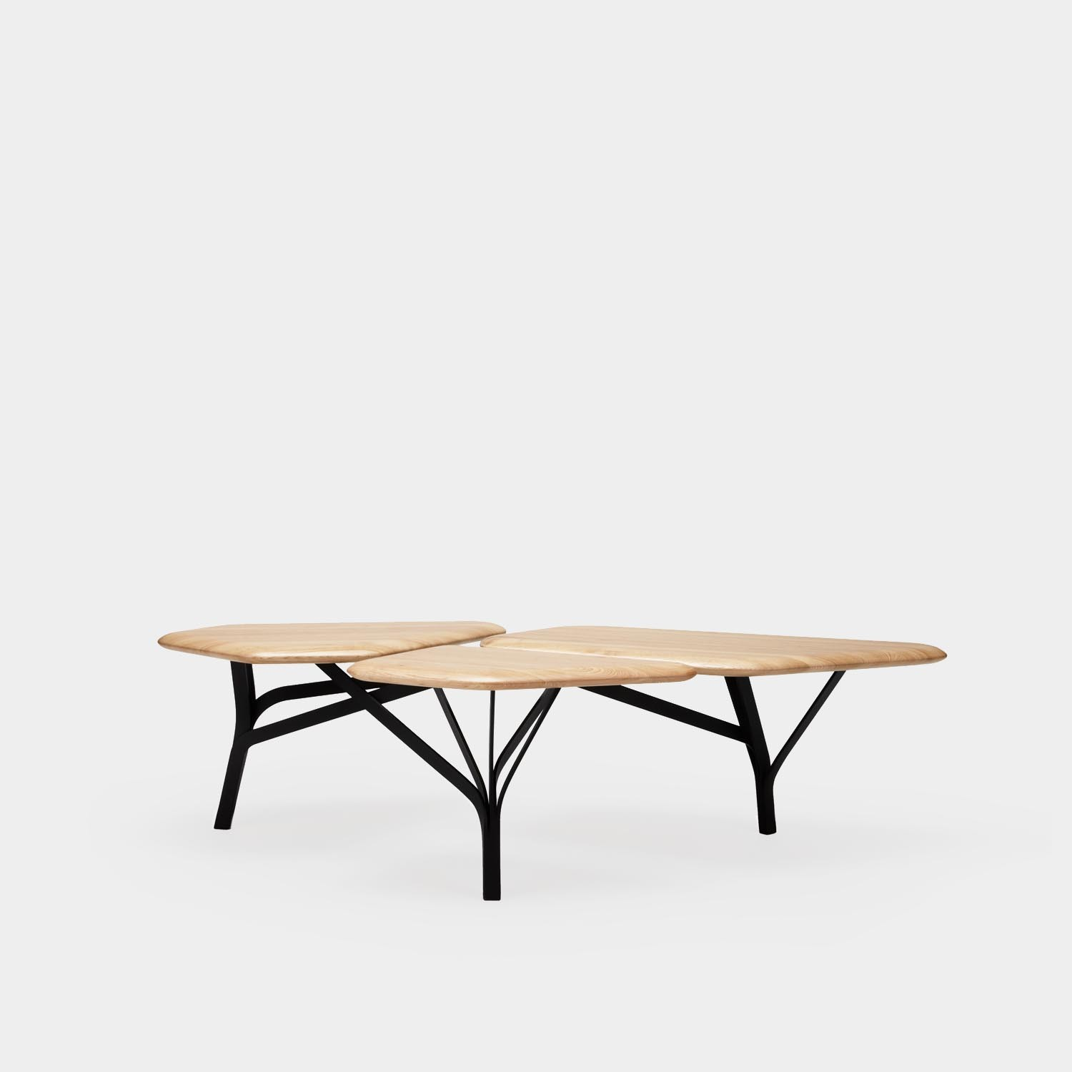 Borghese Coffee Table, Natural Oak